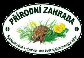 PZ logo transparent